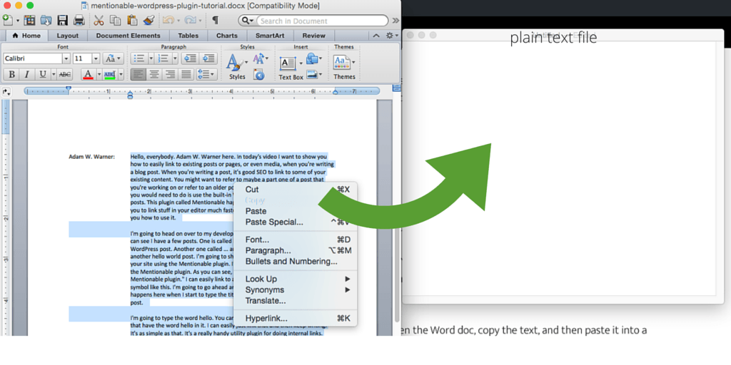 save Word doc as plain text for closed captioning